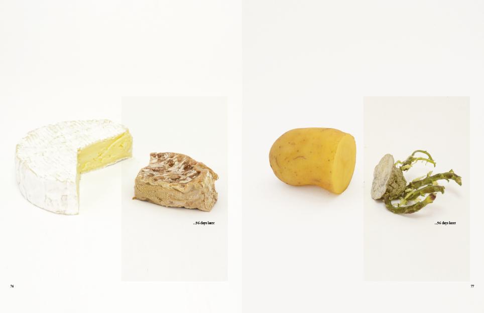 Dik_en_Stijlloos_true-size-of-food12
